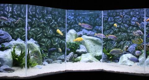 aquarium-hposkam