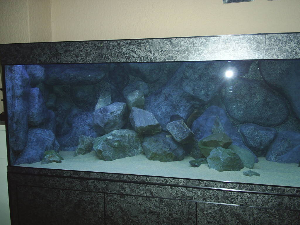 aquarium links