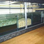 aquarium bioloog