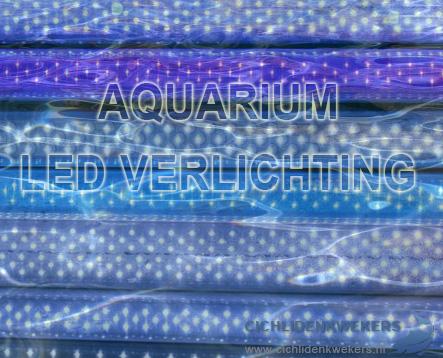 aquarium led verlichting