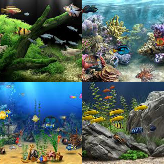 Aquarium screensavers