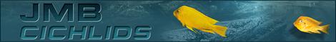 jmb-banner